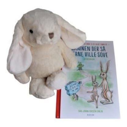 Billede af Kaninen, der så gerne ville sove - med hvid kanin