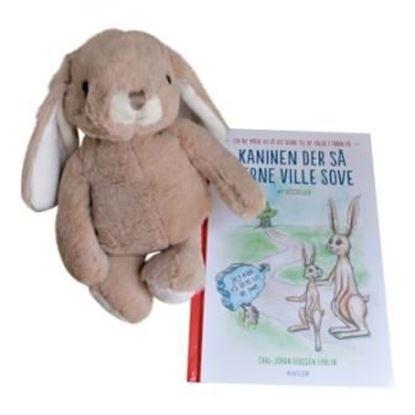 Billede af Kaninen, der så gerne ville sove - med brun kanin