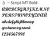 3 - Script MT Bold